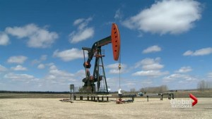 Oil plunge prompts Alberta premier to rethink budget plans