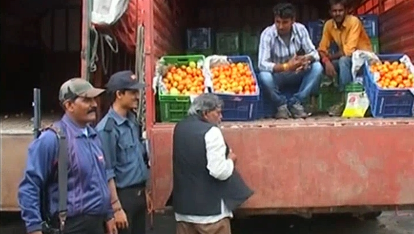 Indore: With tomato prices skyrocketing, sellers deploy armed guards to protect stock