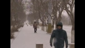 Northwest China hit with snow storms