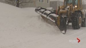 Have no fear; Halifax is ready for snow says new head of winter operations