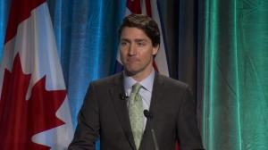 Prime Minister Trudeau announces raft of new spending on climate change, green energy initiatives