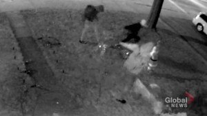 Surveillance video captures group of vandals destroy Christmas decorations outside Toronto home
