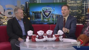 Giants prepare for Ugly Christmas Sweater Night and Teddy Bear Toss