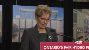 Premier Wynne acknowledges Ontario's hydro pricing problem