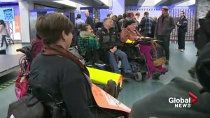 Disabled fight transit in courts