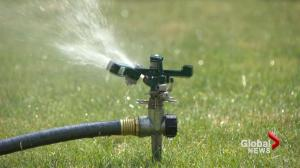 Water restrictions not being followed in bone-dry parts of B.C.