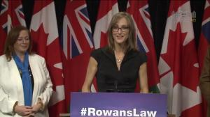 Politicians, health professionals back 'Rowan's Law' calling for greater concussion protocols for youth sport