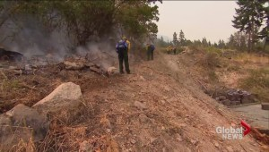 B.C. firefighters to help put out U.S. wildfires to stop them from crossing the border