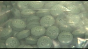 Fentanyl overdoses on the rise in Kingston