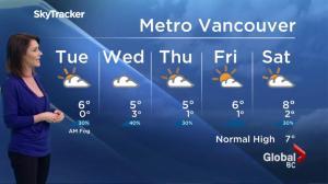 BC Evening Weather Forecast: Jan 23
