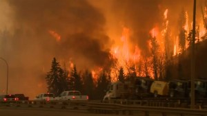 Massive wildfire in Fort McMurray prompts largest fire evacuation in Alberta's history