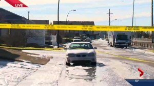 Whitehorn homicide under investigation