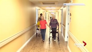 New national hub opens in Fredericton looking at technology and healthy aging
