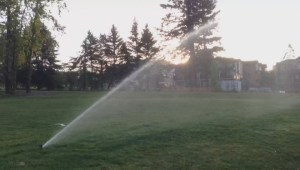 Burning bans and water restrictions begin in Metro Vancouver