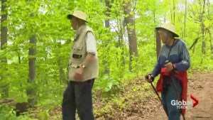 Popular hiking trail in Oakville allows people to scatter love ones' ashes