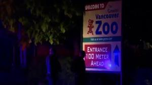 Police investigate two separate shootings this weekend in Langley