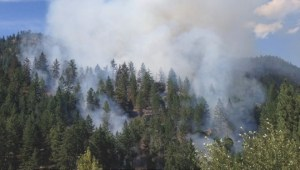 Peachland wildfire August 7th