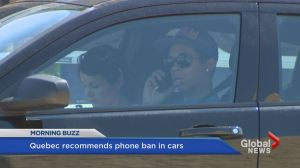 Should we ban all phones from cars?