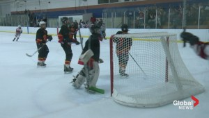 Making minor hockey safe and fun