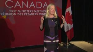 'Historic agreement for framework to tackle climate change': McKenna