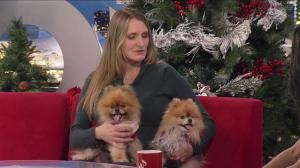 Month of Giving: Langley Animal Protection Society