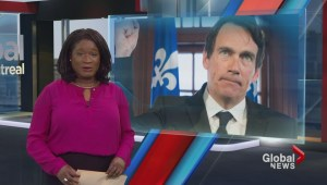 PKP under fire over immigrant comments