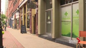 Lawyer believes Saint John medical marijuana dispensary will be charged