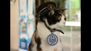 Funeral held for Tama the Cat in Japan; feline elevated to goddess status