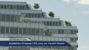 Academics propose 1.5% levy on vacant homes