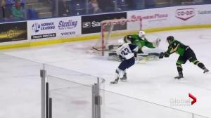 Saskatoon Blades hold on to down Prince Albert Raiders 3-2