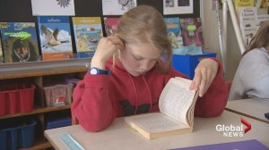 Assessment results show student literacy rates not as good as hoped
