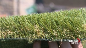 Fake or real? When it comes to your lawn, you have a choice