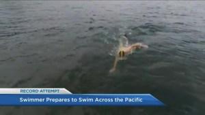 Endurance swimmer prepares to cross Pacific Ocean to raise awareness