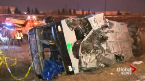 York University employee killed in GO Bus crash