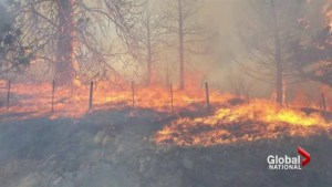 Wildfires sweep through Rock Creek, B.C.