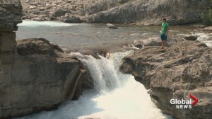 RCMP confirm man stepped over barriers before falling into Elbow Falls