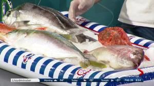 Effing Seafood in the Global kitchen: New Zealand fish (Part 2/3)