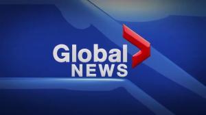 Global News at 5 Edmonton: Aug 8