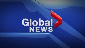Global News at 5 Edmonton: Nov. 23