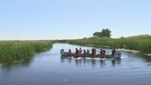 Canoeing at Oak Hammock Marsh
