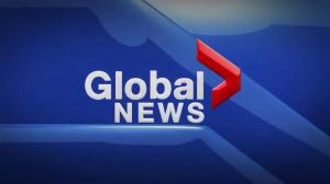 Global News Hour at 6 Weekend Edmonton: Jan. 1