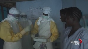 Urgent efforts to stop spread of Ebola