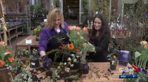 Gardenworks: Planter makeover