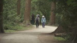 Marrisa Shen murder deemed 'random', raising fears
