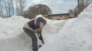 Long Island residents dig out after snow storm