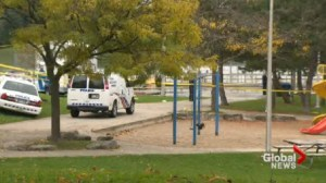 police investigate the murder of a 65 year old woman at a park near Dupont and Dufferin.