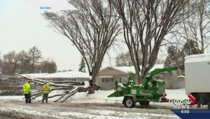 Saskatoon's service alert system fails in outage