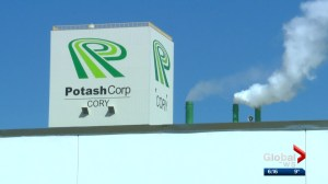 Potash Corp sales on the rise as officials hope it's the start of a trend