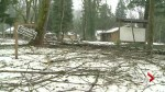 Ice Storm in Hope damages camp