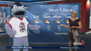 Global News Morning weather forecast: Friday, June 23